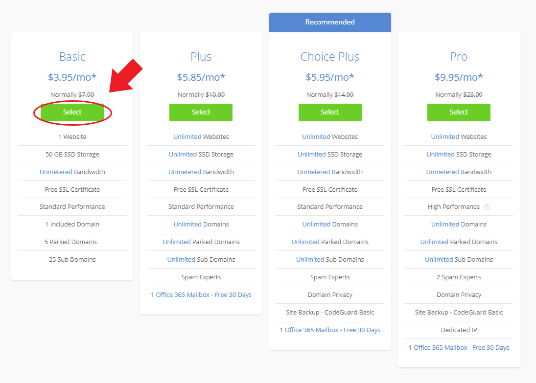 Bluehost Basic Pricing Option