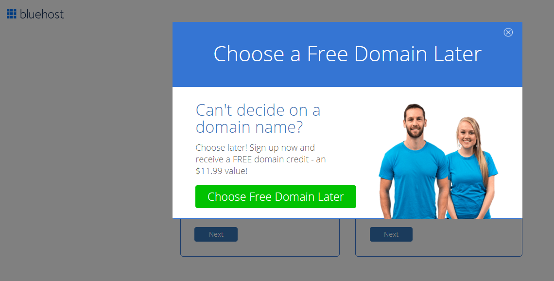 Choose Free Domain Later