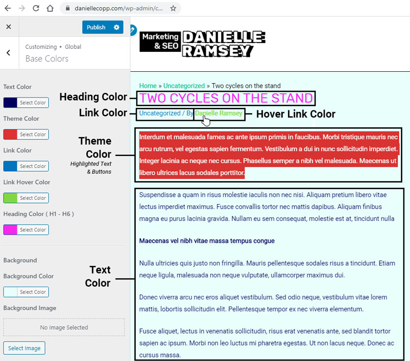 Astra WordPress Theme Color Settings