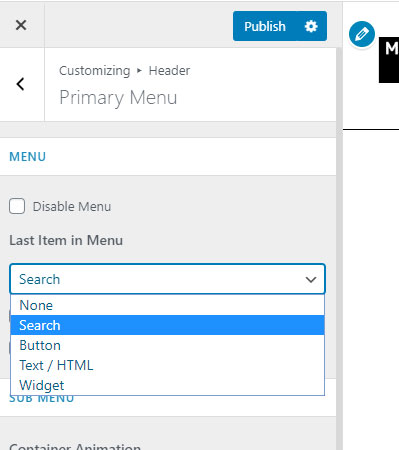 Primary menu astra theme, last item options